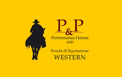 p_e_p_performance